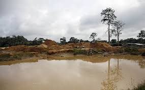 Gold mining in ghana overview of photosynthesis