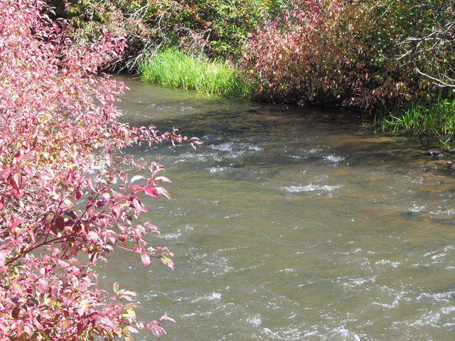 Cochetopa Creek Gold Placer For Sale 1