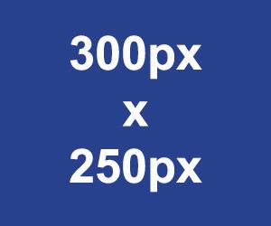 square-300x250