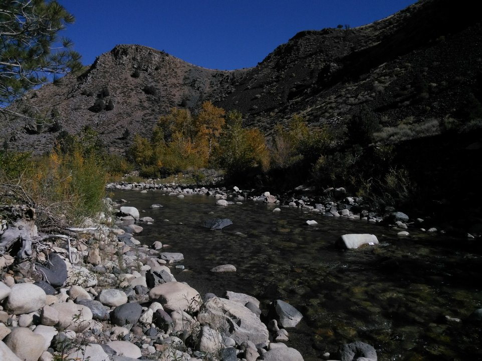 A-Cal-river-3.jpg