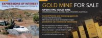 Gold Mine For Sale